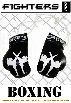 FIGHTERS - Mini Boxhandschuhe / Fighters / Schwarz